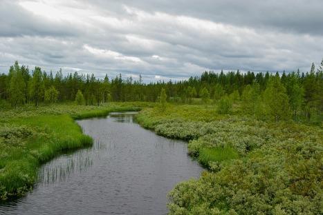 finland-1895715_640