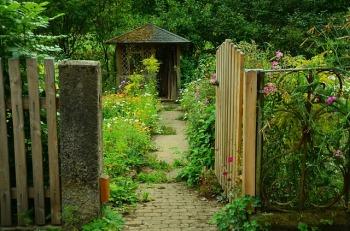 garden-910946_640