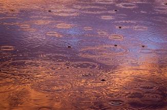 raindrops-1081724_640