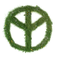 peace-1043093_640
