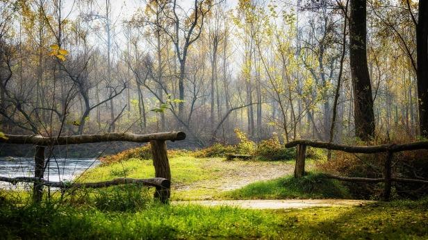 autumn-2986075_1280