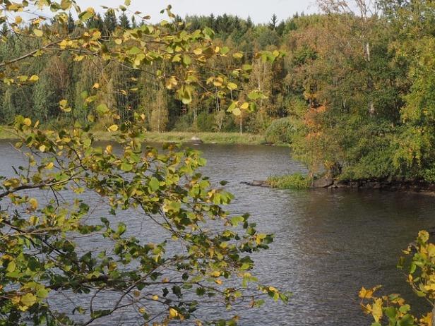 autumn-2834759_640