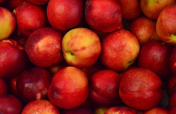 apples-1867043_1280