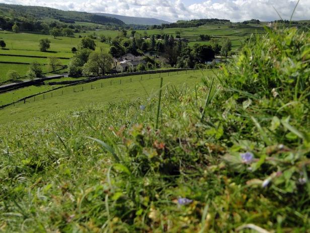 landscape-665966_1280