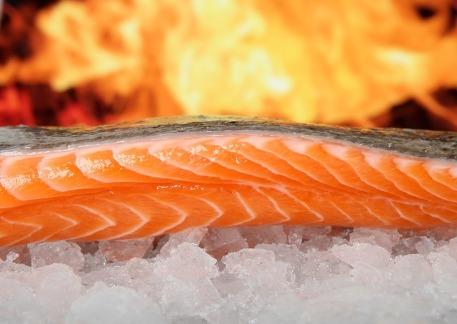 salmon-1238662_640