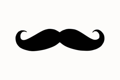 moustache-303571_640