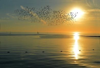 sunset-4649780_640