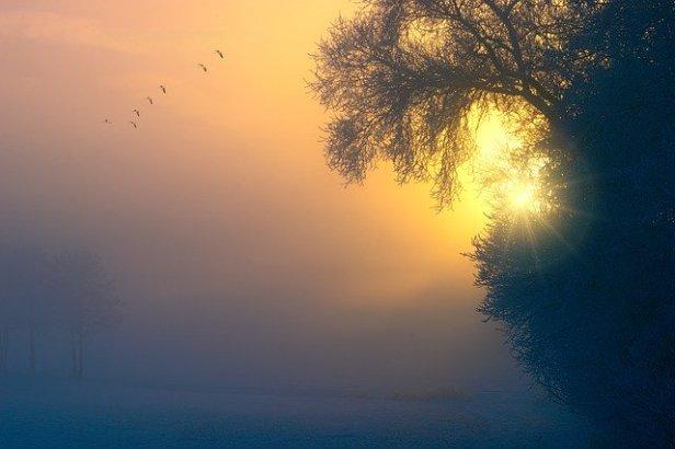 fog-3196953_640